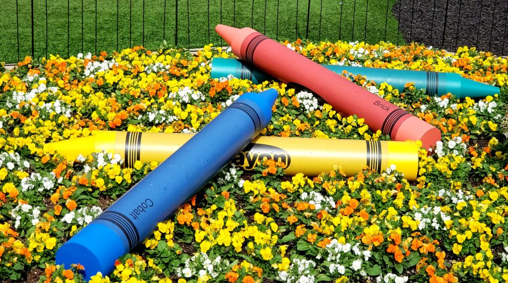 giant crayons on a bed of flowers