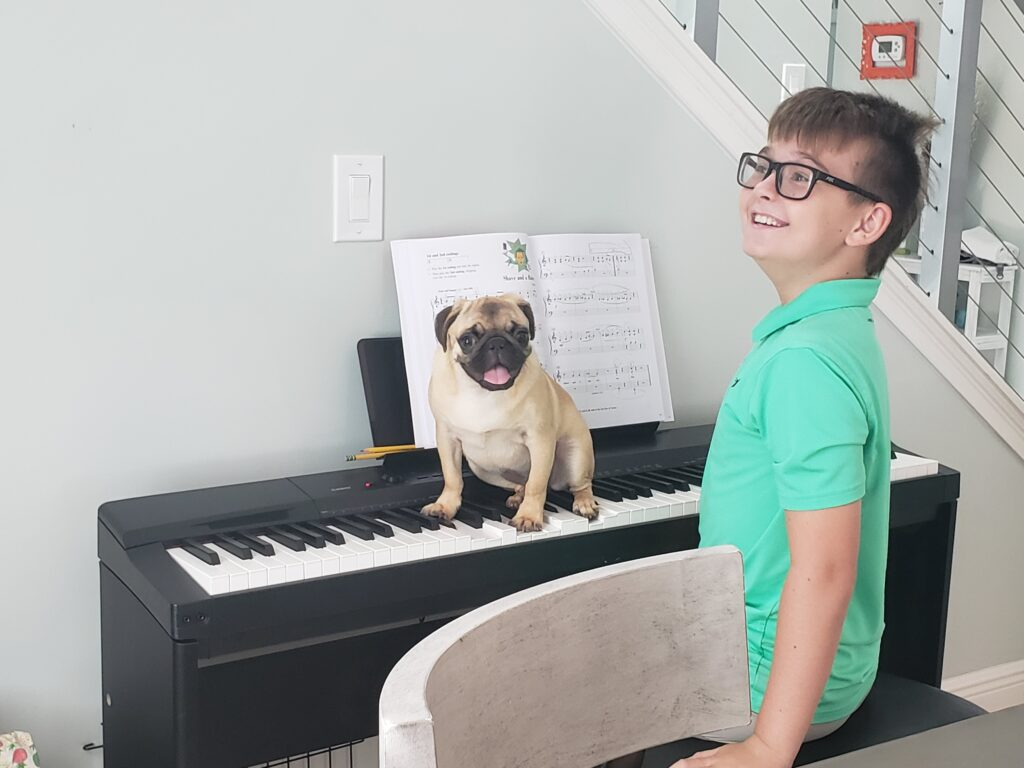 honey th epug on a piano