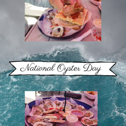 national oyster day - picture of oysters