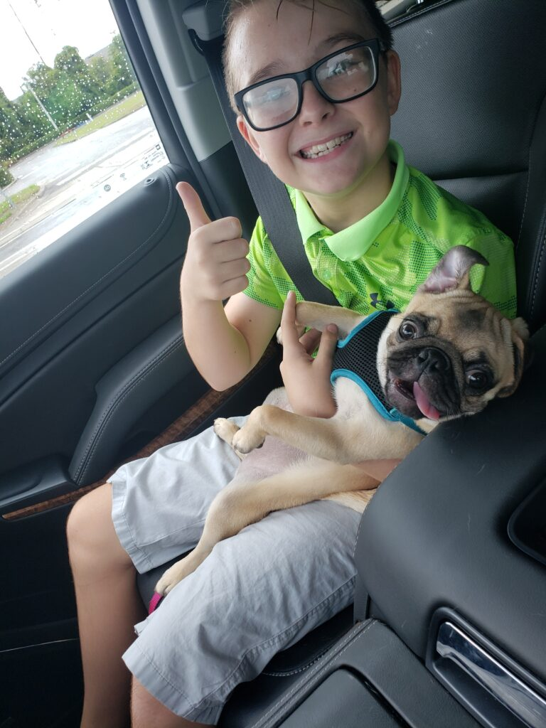 paddy holding honey the pug in the car