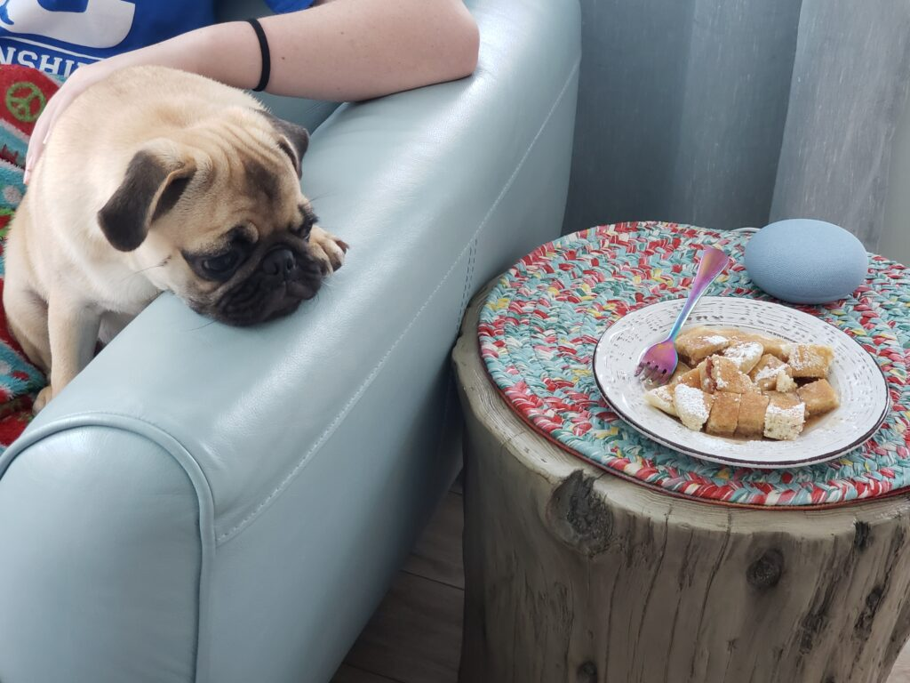 honey the pug with pancakes on the couch