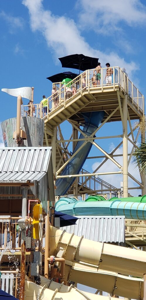 one of the slides at gaylord palms