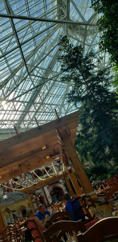 gaylord palms - building inside the hotel - glass celing