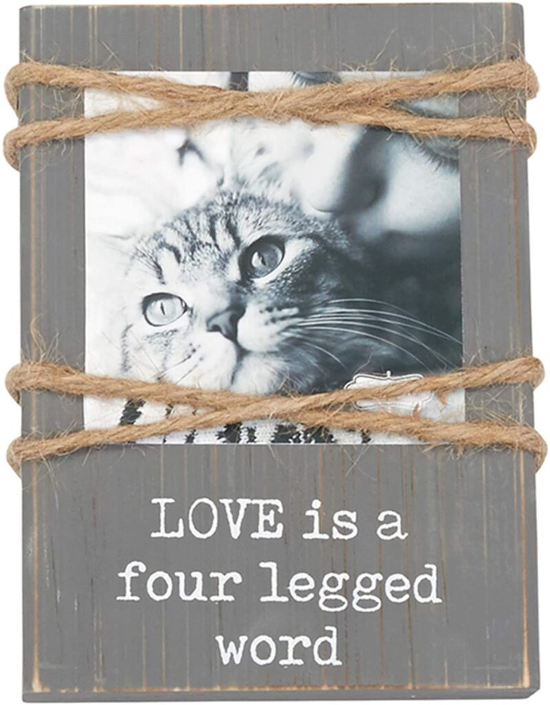 Valentines Day - spread love - love it a four legged word