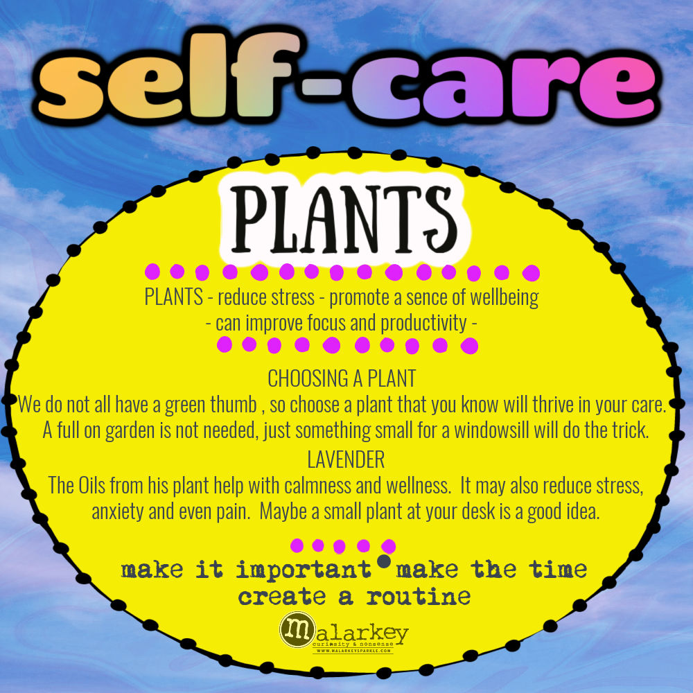 Self-Care - Why do we need it? plant something