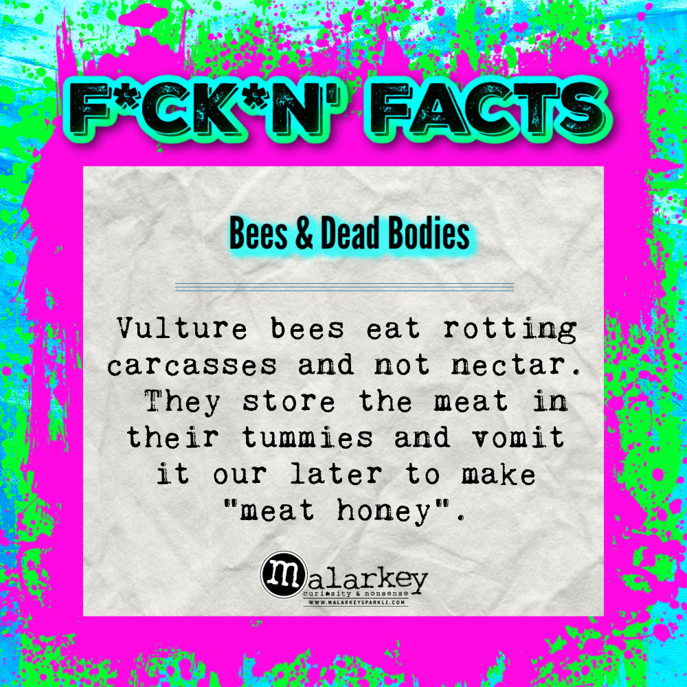 fucking facts - bees and dead bodies